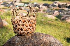 Cestas dos ovos fervidos em Hot Springs Imagens de Stock Royalty Free