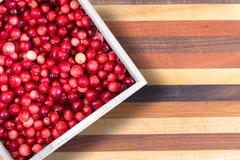 Cestello pieno dei mirtilli rossi rossi maturi freschi Fotografia Stock Libera da Diritti