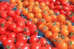 Cestini dei pomodori di ciliegia Fotografia Stock