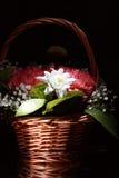 Cestino con i fiori Fotografia Stock
