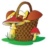 Cestino con i funghi Illustrazione di Stock