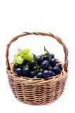 Cestino con l'uva Immagini Stock Libere da Diritti