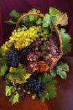 Cestino con l'uva Fotografia Stock