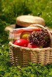 Cestino con le mele e le erbe Immagini Stock Libere da Diritti