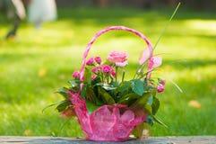 Cestino con le rose Fotografia Stock Libera da Diritti