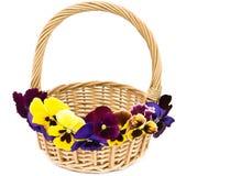 Cestino decorato con i fiori. immagine stock libera da diritti