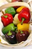 Cestino dei peperoni dolci Fotografie Stock