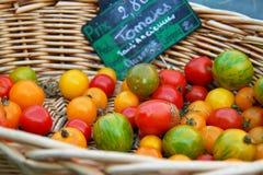 Cestino dei pomodori Immagine Stock Libera da Diritti