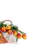 Cestino dei tulipani rossi e gialli con il verticale del merletto Immagine Stock Libera da Diritti