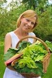 Cestino della holding della giovane donna con la verdura Fotografia Stock Libera da Diritti