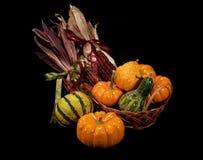 Cestino della raccolta di autunno Fotografie Stock Libere da Diritti