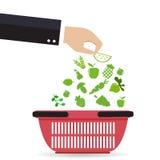 Cestino della spesa con la frutta e le verdure organiche Illustrazione di vettore Fotografia Stock