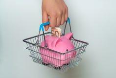 Cestino della spesa della tenuta della mano con il porcellino salvadanaio Immagini Stock Libere da Diritti