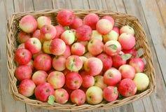 cestino delle mele Immagini Stock Libere da Diritti