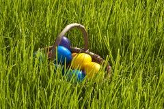 Cestino delle uova di Pasqua Fotografia Stock