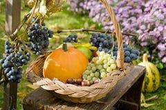 Cestino di autunno immagine stock