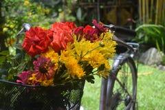 Cestino di fiori Fotografie Stock