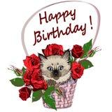 Cestino di fiori di vimini con le rose rosse ed il gattino Immagini Stock Libere da Diritti