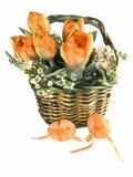 Cestino di Pasqua con le uova Immagine Stock