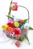 Cestino di Pasqua dei pulcini del bambino Fotografia Stock