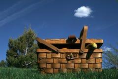 Cestino di picnic Fotografie Stock Libere da Diritti