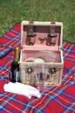 Cestino di picnic Fotografia Stock Libera da Diritti