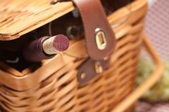 Cestino di picnic, bottiglia di vino e vetri vuoti Immagine Stock Libera da Diritti