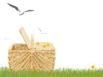 Cestino di picnic in erba Fotografie Stock