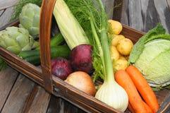 Cestino di verdure della raccolta Fotografie Stock