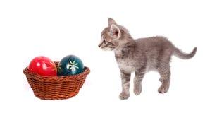 Cestino e gatto di Pasqua Fotografie Stock