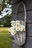 Cestino in pieno dei fiori immagini stock