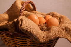 Cesto bedriegt huevos Stock Foto