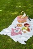 Cesto de mimbre de la comida campestre con la comida fresca y el vino Fotografía de archivo libre de regalías