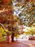 Cetinje royalty free stock photos