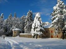 Cetinje y nieve Fotografía de archivo
