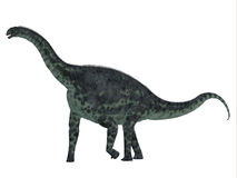 Cetiosaurus Dinosaur Side Profile Royalty Free Stock Photos