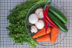 Cetrioli freschi, funghi, peperoncino, carote, verdi su una ciotola trasparente rotonda Fotografia Stock Libera da Diritti