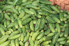 Cetrioli indiani al mercato di verdure L'India Fotografia Stock Libera da Diritti