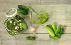 Cetrioli marinati casalinghi Fotografia Stock
