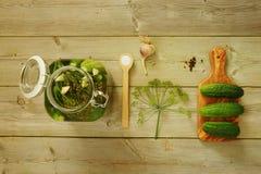 Cetrioli marinati casalinghi Fotografie Stock Libere da Diritti