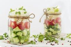 Cetrioli, pomodori e cavolo in un barattolo di vetro immagini stock libere da diritti