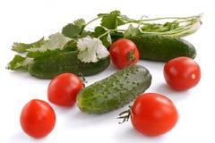 Cetrioli, pomodori e verdi Fotografia Stock