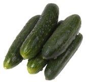 Cetrioli verdi immagine stock