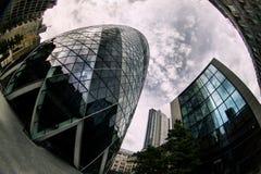 Cetriolino a Londra Fotografia Stock