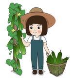 Cetriolo del raccolto della piantatrice Fotografie Stock Libere da Diritti