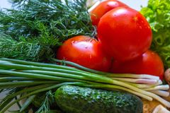 Cetriolo dell'insalata dei pomodori dei funghi e della cipolla su fondo bianco Fotografia Stock Libera da Diritti