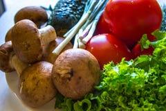 Cetriolo dell'insalata dei pomodori dei funghi sulla fine della tavola di cena su Immagine Stock