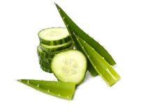 Cetriolo verde Fotografie Stock