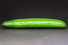 Cetriolo verde Fotografia Stock