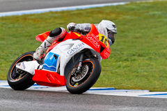 CEV Championship, November 2011 Stock Photography